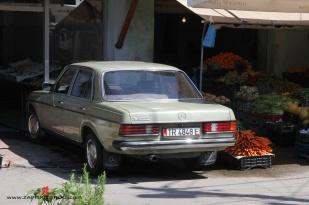 albania537