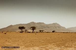 Maroko-pustynia 07
