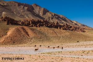 Maroko 0510