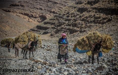 Maroko 0561