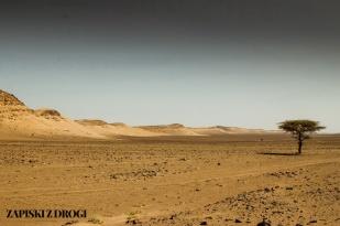 Maroko 0734