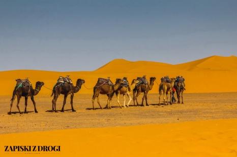 Maroko 0868