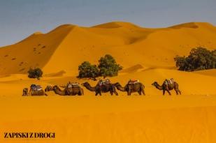 Maroko 0886