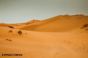 Maroko 0925