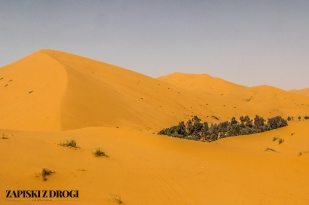 Maroko 0987