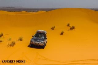 Maroko 1013