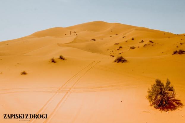 Maroko 1039
