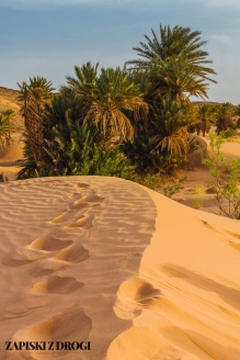 Maroko 1074