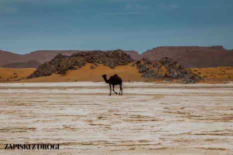 Maroko 1120