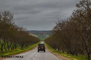 029 Mołdawia
