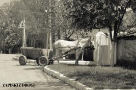 278 Mołdawia