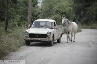 Grecja 0489