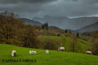 0107 Lake District National Park