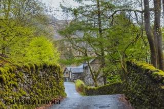 0112 Lake District National Park