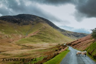 0153 Lake District National Park