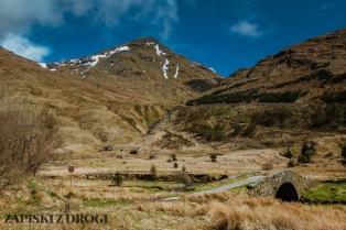 0217 South West Scotland