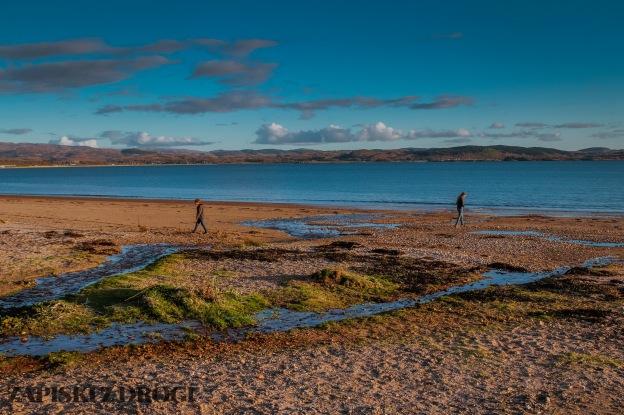 0271 South West Scotland