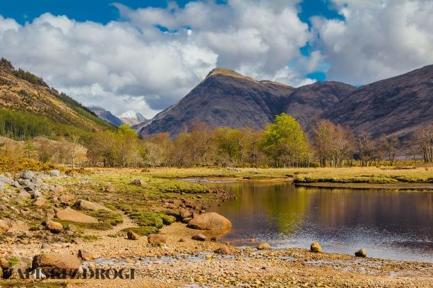 0361 South West Scotland