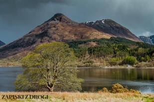 0389 South West Scotland