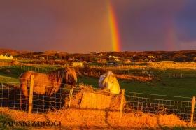 0450 South West Scotland