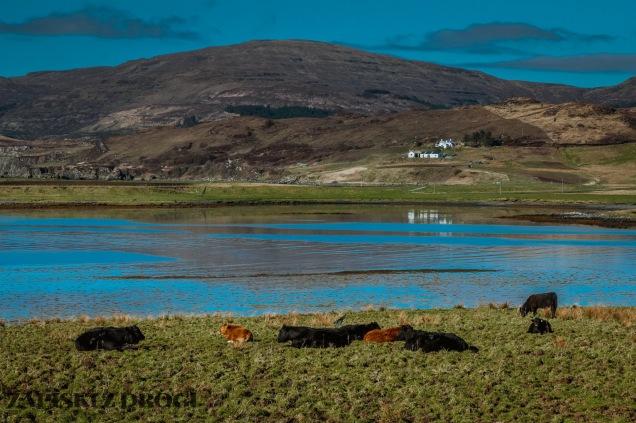 0587 Isle of Skye