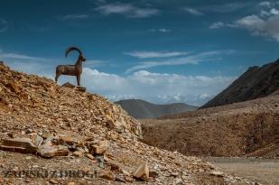 1_0271 Kirgistan - Kara-Say