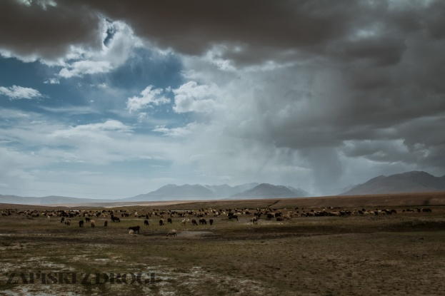 1_0301 Kirgistan - Kara-Say