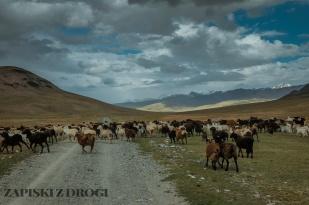 1_0339 Kirgistan - Kara-Say