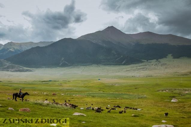 1_0472 Kirgistan - Tosor