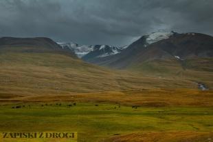 1_0534 Kirgistan - Tien Shan