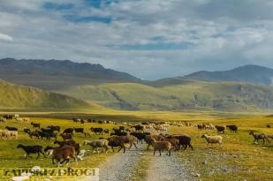 1_0600 Kirgistan - Tien Shan