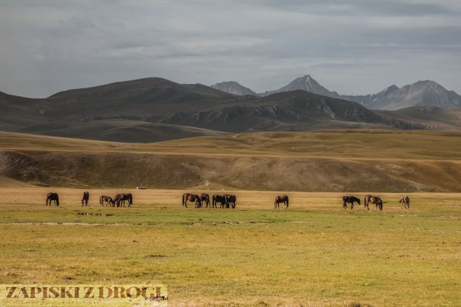 1_0669 Kirgistan - Tien Shan