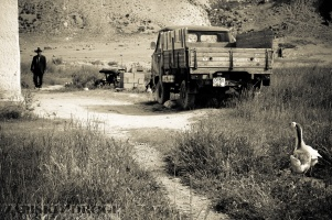 1_0699 Kirgistan - Tien Shan