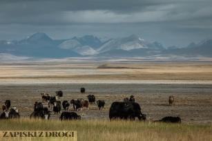 1_0937 Kirgistan - Ak-Say