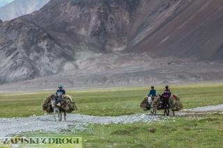 0314 Tadzykistan - Takhtamysh-Zorkul