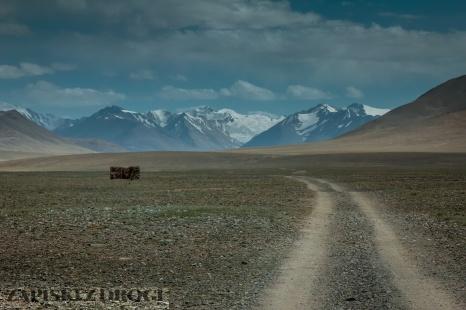 0448 Tadzykistan - Takhtamysh-Zorkul