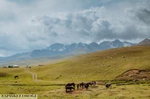 2_0061 Kirgistan - Rishtan - Jalal-Abad