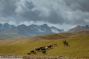 2_0063 Kirgistan - Rishtan - Jalal-Abad