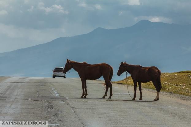 2_0071 Kirgistan - Rishtan - Jalal-Abad