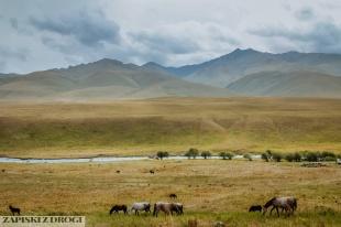 2_0110 Kirgistan - Karakol Pass