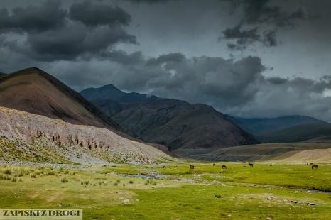 2_0173 Kirgistan - Karakol Pass